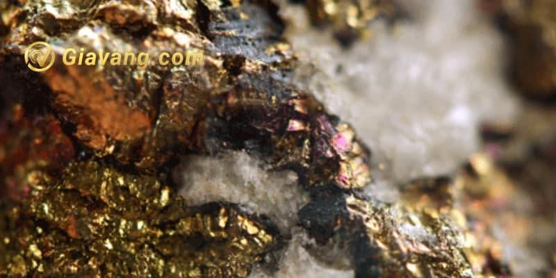Dự án vàng Swift ở Nevada